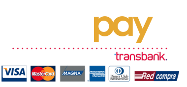 Resultado de imagen para webpay logo